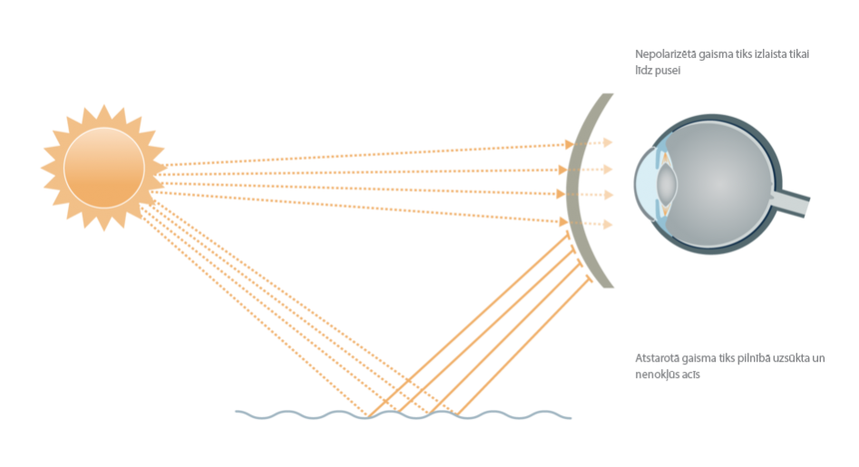 148pdid-sun-poliarizacijos-efektas-lv_3361-80fc6a4db372df50497f72caadc73ab3.PNG